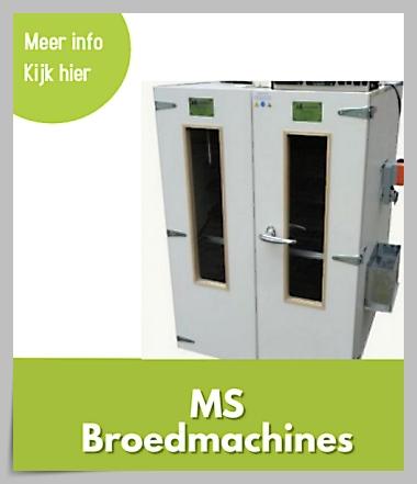 ms broedmachines1